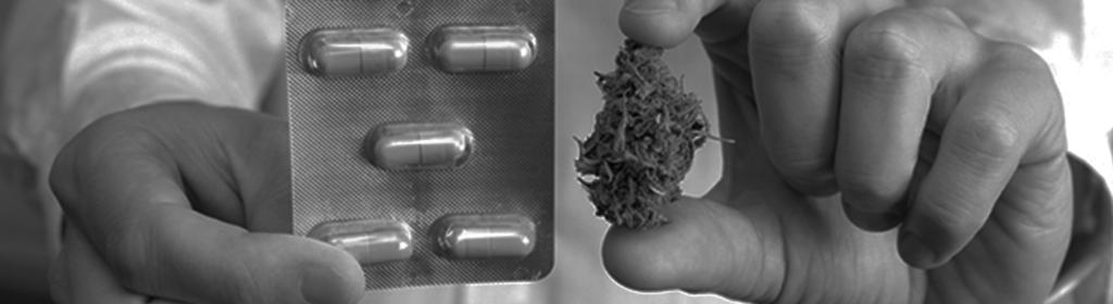 Pharmacist prescribing cannabis.