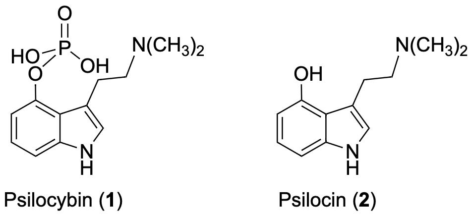 Psilocybin and its prodrug.